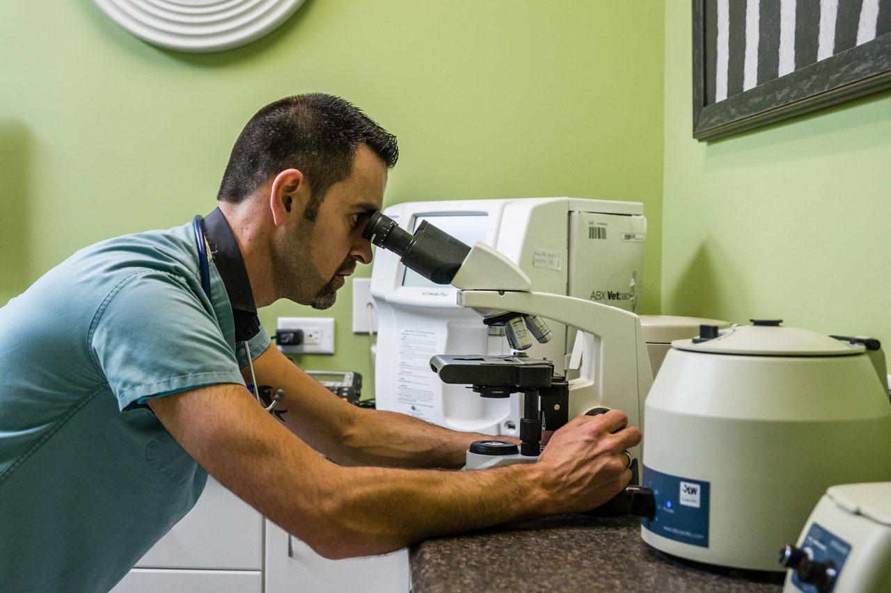 lab-microscope-2016